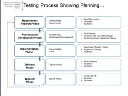 Testing Process Showing Planning Development Delivery Phase