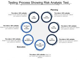 Testing Process Showing Risk Analysis Test Organization Test Report