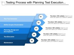 Testing Process With Planning Test Execution Maintenance