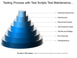 Testing Process With Test Scripts Test Maintenance Test Execution