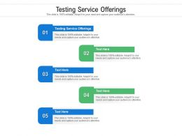 Testing Service Offerings Ppt Powerpoint Presentation Gallery Microsoft Cpb