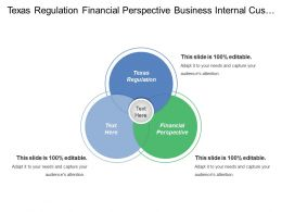 Texas Regulation Financial Perspective Business Internal Customer Perspective