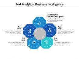 Text Analytics Business Intelligence Ppt Powerpoint Presentation Outline Show Cpb
