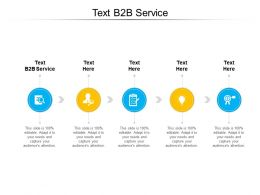 Text B2B Service Ppt Powerpoint Presentation Graphics Cpb