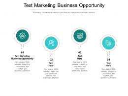 Text Marketing Business Opportunity Ppt Powerpoint Presentation Summary Clipart Cpb