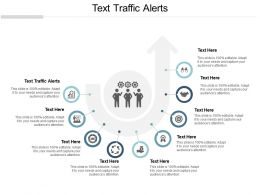 Text Traffic Alerts Ppt Powerpoint Presentation Gallery Elements Cpb