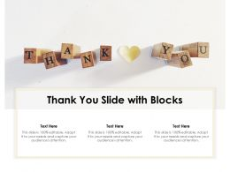 Thank You Slide With Blocks