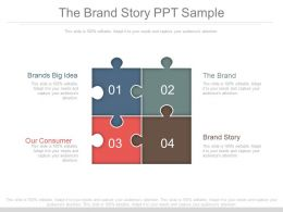 The Brand Story Ppt Sample