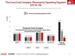 The Coca Cola Company Revenue By Operating Segment 2016-18