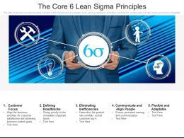 The Core 6 Lean Sigma Principles