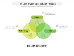 The Lean Sweet Spot In Lean Process