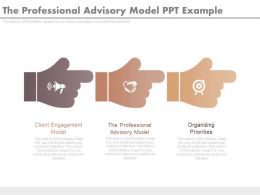 The Professional Advisory Model Ppt Example