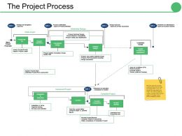 The Project Process Ppt Professional Examples