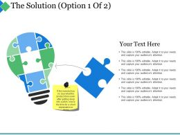 The Solution Ppt Summary Infographic Template