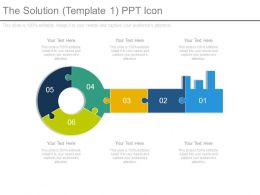 The Solution Template1 Ppt Icon
