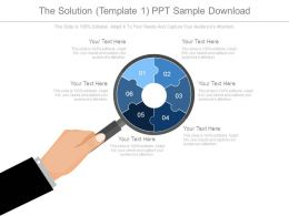 The Solution Template1 Ppt Sample Download