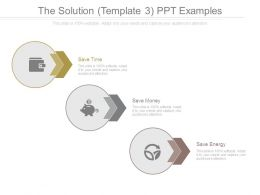 The Solution Template 3 Ppt Examples