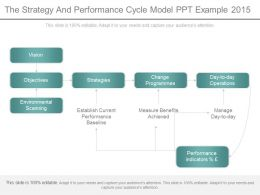 The Strategy And Performance Cycle Model Ppt Example 2015