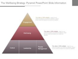 The Wellbeing Strategy Pyramid Powerpoint Slide Information