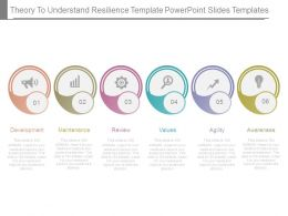 Theory To Understand Resilience Template Powerpoint Slides Templates