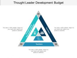Thought Leader Development Budget Ppt Powerpoint Presentation Ideas Example Cpb
