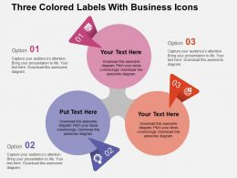 Three Colored Labels With Business Icons Flat Powerpoint Design