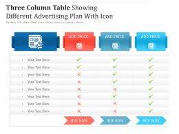 Three Column Table Showing Different Advertising Plan With Icon