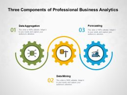 Three Components Of Professional Business Analytics