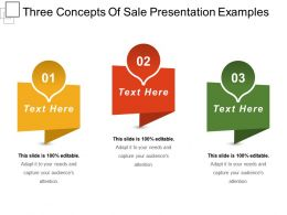Three Concepts Of Sale Presentation Examples