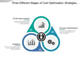 Three Different Stages Of Cost Optimization Strategies Covering Profit Improvement And Process Optimization