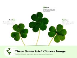 Three Green Irish Clovers Image