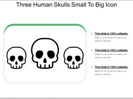 Three Human Skulls Small To Big Icon