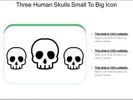 Three Human Skulls Small To Big Icon