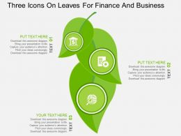 Three Icons On Leaves For Finance And Business Flat Powerpoint Design