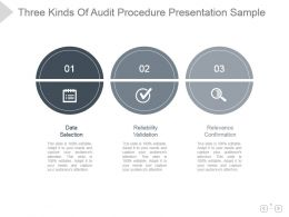 Three Kinds Of Audit Procedure Presentation Sample