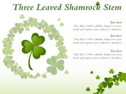 Three Leaved Shamrock Stem