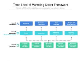 Three Level Of Marketing Career Framework