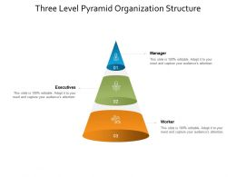 Three Level Pyramid Organization Structure
