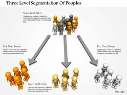 Three Level Segmentation Of Peoples Ppt Graphics Icons