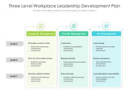 Three Level Workplace Leadership Development Plan