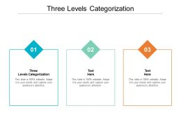 Three Levels Categorization Ppt Powerpoint Presentation Pictures Visual Aids Cpb