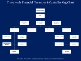 Three Levels Financial Treasurer And Controller Org Chart