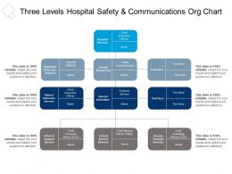 Three Levels Hospital Safety And Communications Org Chart