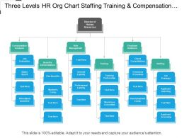 Three Levels Hr Org Chart Staffing Training And Compensation Analysis
