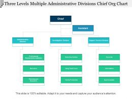 Three Levels Multiple Administrative Divisions Chief Org Chart