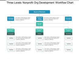Three Levels Nonprofit Org Development Workflow Chart