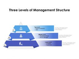 Three Levels Of Management Structure