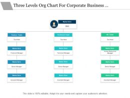Three Levels Org Chart For Corporate Business Functions