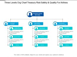 Three Levels Org Chart Treasury Risk Safety And Quality For Airlines