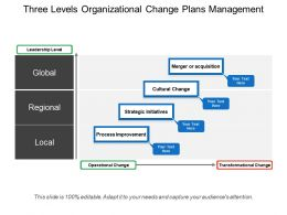 Three Levels Organizational Change Plans Management